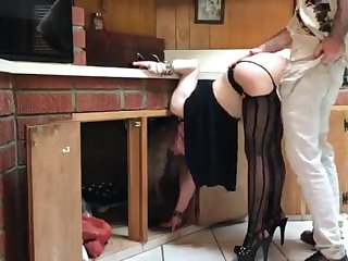 COUGAR stuck in the kitchen drilled away from neighbor (pin)